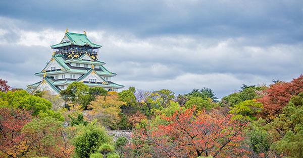 日本行政関連や自治体